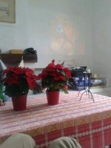 20121222-213319.jpg