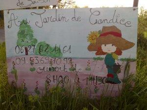 ©Murviel - en levande by där Languedoc är som finast!
