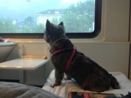 På biltåg!