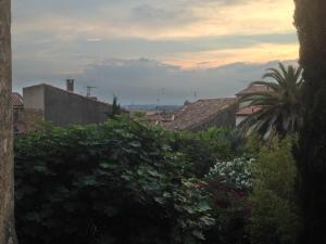 Utsikt över trädgård och bytak