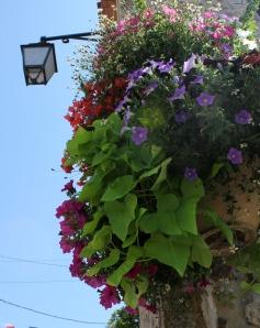 Fotograferade blomsterdekorationerna medan de vattnades. Blev blöt.