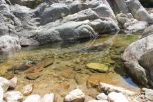 Kristallklart och uppfriskande var vattnet