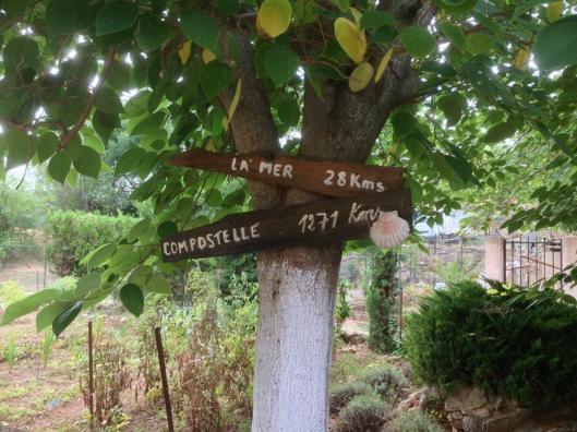 Vägen till Compostela går förbi Abbaye de Fontcaude. Vi gick varken till havet eller till Compostela.