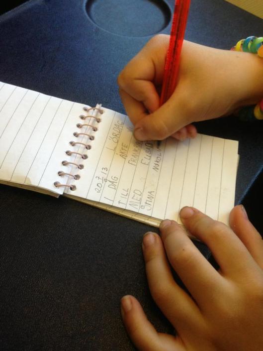 dagbok på plan