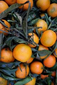 Clementiner!