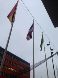 Arma Tricolor, en sådan groteskgrå bakgrund!