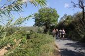 fantastisk promenadväg genom odlingarna
