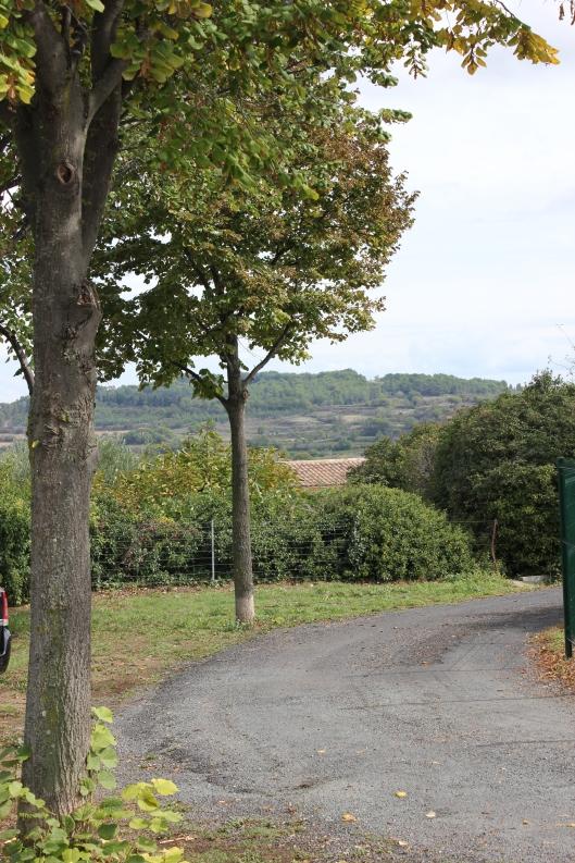 Bortåt vinfälten bakom ålderdomshemmet i Murviel. Fin utsikt för åldringarna!