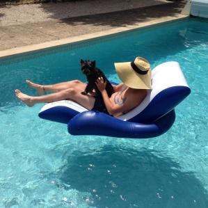 hund i pool