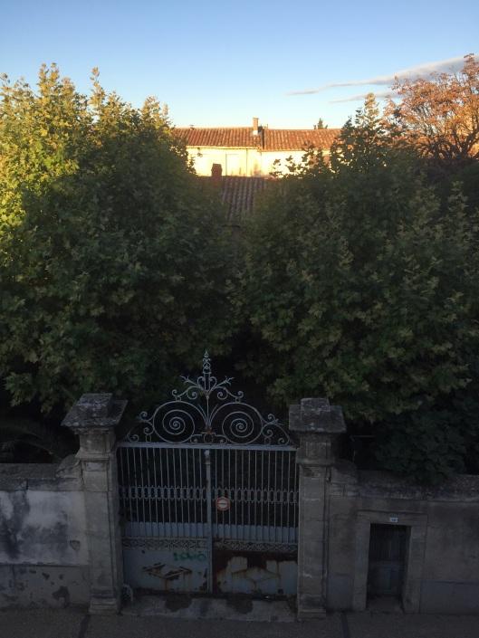 Trädgården bakom den gamla grinden är alldeles övervuxen