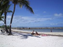 Ett stopp på väg till Key West